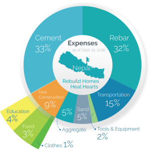 pie chart expenditure dhola